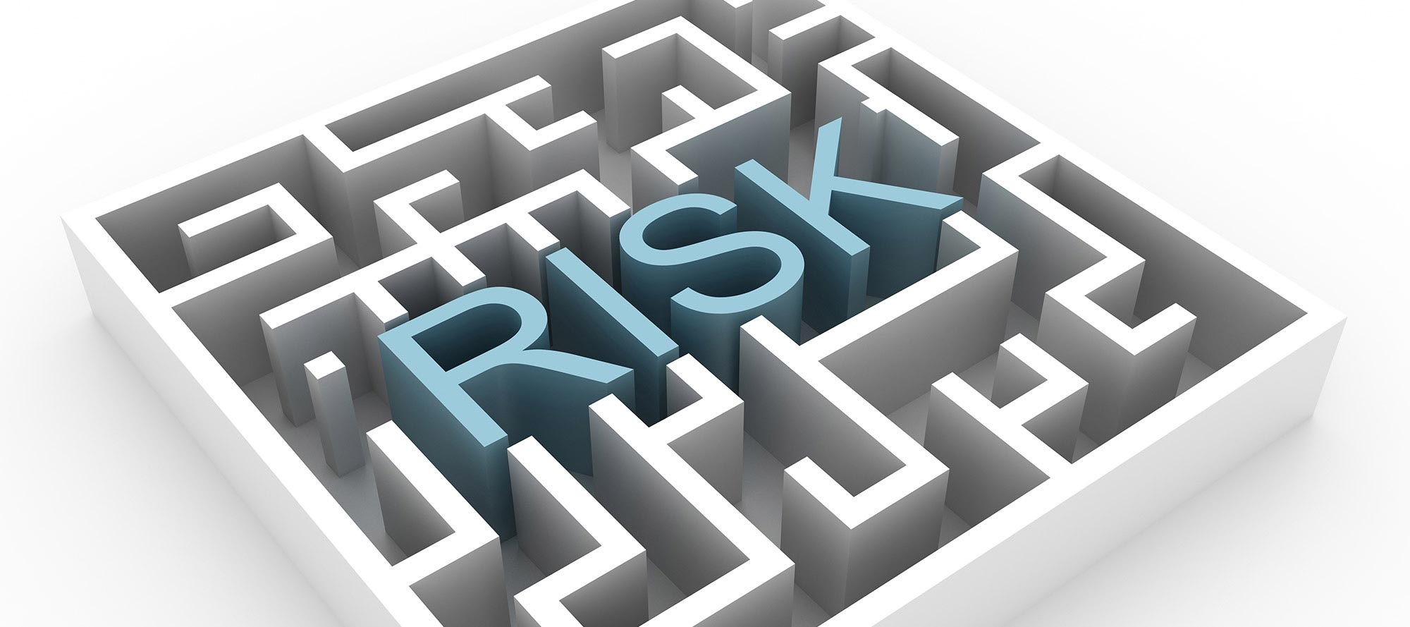What most businesses and investors get wrong about risk.